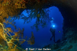 One of the many caves at Situ island Mozambique by Peet J Van Eeden