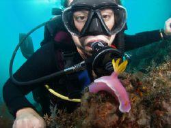 Diver & Bullocki Bali Olympus 7070 by Brad Cox