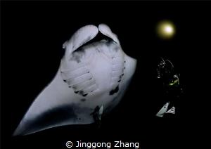 Night dancer by Jinggong Zhang