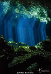 Cenote Tajma Ha, Mexico by Natalie Bondarenko