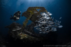 B O U N T Y - W R E C K Gili Meno Lombok (Gili), Indone... by Irwin Ang