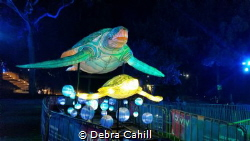 As part of this years Taronga Zoo Vivid a light sculpture... by Debra Cahill