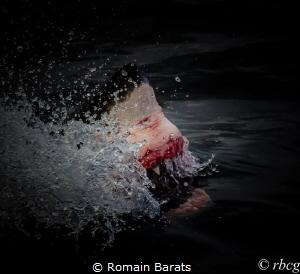 jaws  by Romain Barats