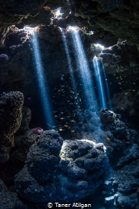 Caves of Jackfish alley by Taner Atilgan