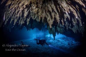 Diver in Dream Gates, Playa del Carmen Mexico by Alejandro Topete