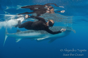 Roger y Whale Shark, Isla Contoy Mexico by Alejandro Topete