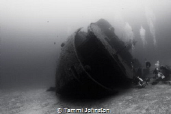 Wreck in Roatan Honduras by Tammi Johnston