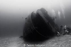 Wreck in Roatan Honduras by Tammi Johnston