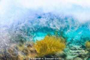 """Turbulent Seas"" - Waves crash into a shallow reef as a g... by Susannah H. Snowden-Smith"