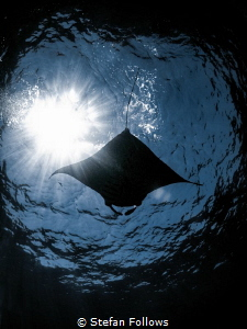 Penumbra