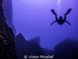Free fallin' into the blue by Victor Micallef