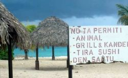A private beach I found in Curacao. by Kelly N. Saunders