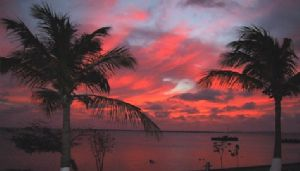 Bonaire Sunset.  This was taken with a Canon PowerShot S1... by Donna L. Rogers