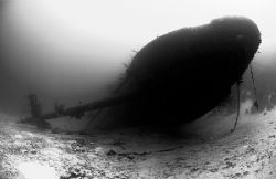 Hooker wreck in Bonaire. Nikon D2x, 10.5 FE. by Rand Mcmeins