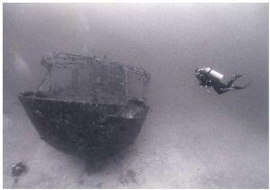 """Malaveli"", Dinasha (Maldives), Sea&Sea SX1000, 14mmm by Phil Lenz"