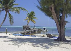 This idyllic view is from our favorite dive resort on Lit... by Jim Chambers