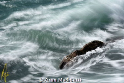 Holding firm despite the surge, passing of hurricane Joae... by Arun Madisetti