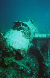 WW II Japanese Float-Plane. The dive guide considered thi... by Morgan Ashton
