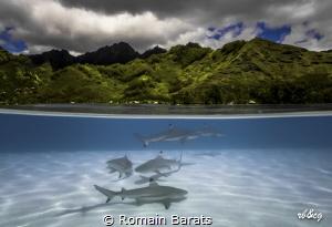 a O/U from a polynesian beach by Romain Barats