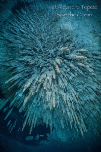 Explosion in Dream Gates, Playa del Carmen México by Alejandro Topete