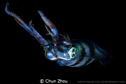 Starry Eyes in the black by Chun Zhou