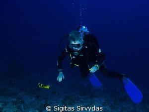 An unexpected encounter by Sigitas Sirvydas