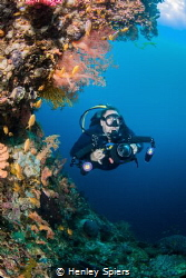 Diver explores secret reef by Henley Spiers