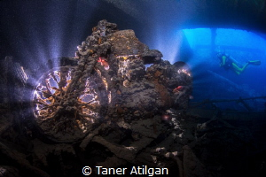 2017-This year I went back to northern Red Sea and wanted... by Taner Atilgan