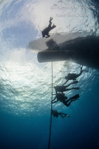 Divers safety stop, San Benedicto México by Alejandro Topete