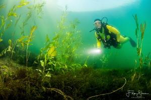 Exploring the pond of Ekeren, Belgium. Model: Marlène Ter... by Filip Staes