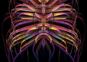 T R I B A L Tube anemone by Lilian Koh
