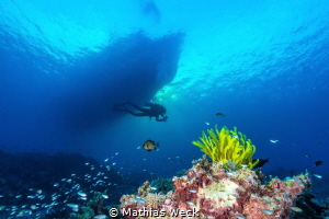 Tubbataha reef with diver and boat by Mathias Weck