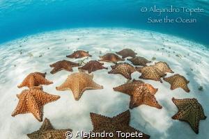 Stars in the Sky, Cozumel México  by Alejandro Topete