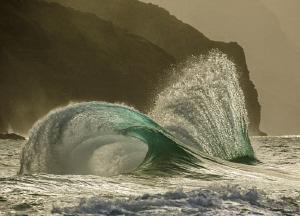 Ocean Sculptures by Tony Cherbas