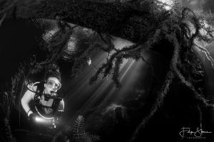 """""""Under the fallen tree"""", Lake Ekeren, Belgium, model: Mar... by Filip Staes"""