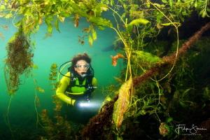 Freshwater jungle, Pond of Ekeren, Belgium, model: Marlèn... by Filip Staes