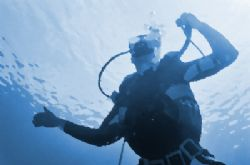 Blue Diver / A simple shot from below with some work in P... by Spencer Multack