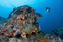 Crystal Bay Nusa Penida, Indonesia. by Irwin Ang