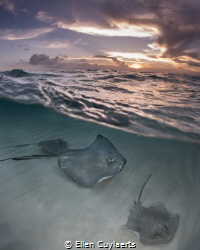 Sunset at the Sandbar, the calm returns! by Ellen Cuylaerts