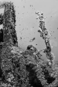 Ustica Wreck by Marco Gargiulo