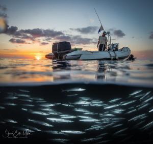 Wakatobi night dive by Steven Miller