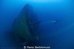 The Valfiorita Shipwreck Bow - Strait of Messina - Italy by Marco Bartolomucci