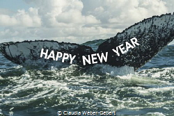 a happy new year to all of you <3 by Claudia Weber-Gebert