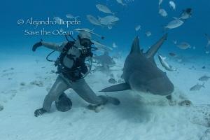 Octavio and the Bull Shark, Playa del Carmen México by Alejandro Topete