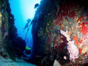 Cozumel Ship Wreck by Daniel Waldman