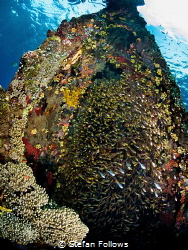 Bounty  Japanese Wreck, Amed, Bali, Indonesia by Stefan Follows