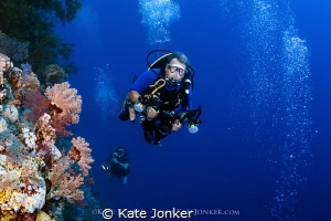 Exploration Divers explore the vibrant reefs of the Deep... by Kate Jonker