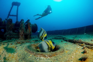 Fang Ming wreck, La Paz, Mexico. Model: Liane Buelens. by Filip Staes