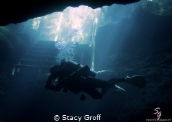 Diver Silhouetted at the entrance to Paradise Springs in ... by Stacy Groff