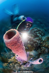 Scuba Diver Natalia looking up at the tall standing tube ... by Nick Polanszky